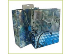 Hologram Paper Bags
