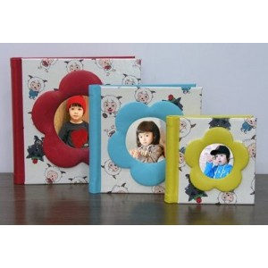 2012 Fancy Baby Photo Albums